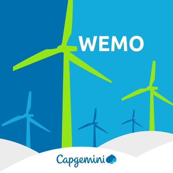 WEMO: the World Energy Markets Observatory