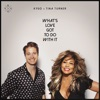 What's Love Got to Do with It - Single