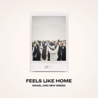 Feels Like Home, Vol. 1 - Israel & New Breed Cover Art