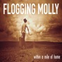 To Youth (My Sweet Roisin Dubh) by Flogging Molly