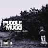 Puddle of Mudd - She Hates Me artwork