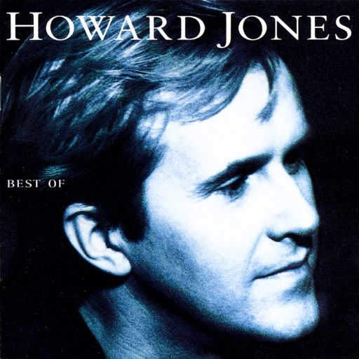 Art for Life In One Day by Howard Jones