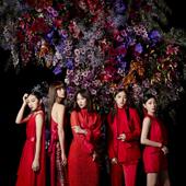 紅のドレス