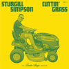 Sturgill Simpson - Cuttin' Grass - Vol. 1 (Butcher Shoppe Sessions) artwork