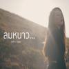 SKP - ลมหนาว (feat. Owen) artwork