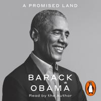 Barack Obama - A Promised Land artwork