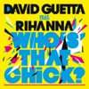 Who s That Chick feat Rihanna EP