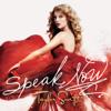 Taylor Swift - Enchanted artwork