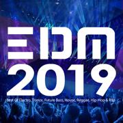 EDM 2019: Best of Electro, Trance, Future Bass, House, Reggae, Hip-Hop & Rap - Various Artists - Various Artists