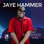 Jaye Hammer - You Got a Good Un