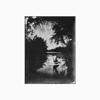 Trey Anastasio - Lonely Trip  artwork