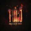 Ranji & Bizzare Contact - Fogo artwork