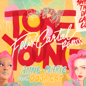 Anne-Marie - To Be Young feat. Doja Cat [Felix Cartal Remix]