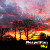 The Avett Brothers - Neapolitan Sky  artwork