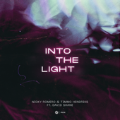 Into the Light (feat. David Shane) [Extended Mix]
