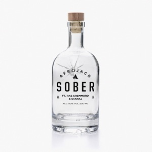 Sober (feat. Rae Sremmurd & Stanaj) - Single Mp3 Download