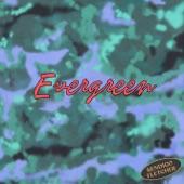 Bendigo Fletcher - Evergreen