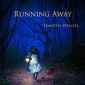 Timothy Wenzel - Makes You Wonder (feat. Jeff Haynes & Josie Quick)