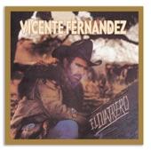 Vicente Fernández - Mujeres Divinas (Album Version)