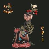 Flor de Nopal - Dale Chance