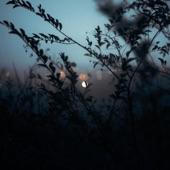 Silhouette artwork
