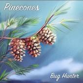 Bug Hunter - Pinecones