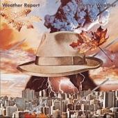 Weather Report - Palladium