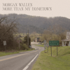 More Than My Hometown - Morgan Wallen mp3