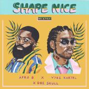 Shape Nice - Afro B, Vybz Kartel & Dre Skull - Afro B, Vybz Kartel & Dre Skull