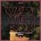 Armin van Buuren Ft. Sam Martin - Wild Wild Son (Fatum Extended Remix) feat. Sam Martin