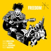 David Walters - Freedom (feat. Vincent Segal, Ballaké Sissoko & Roger Raspail)