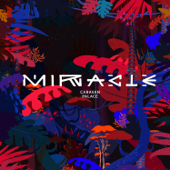 [Download] Miracle MP3