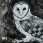 Cosmo Sheldrake - Cuckoo Song