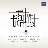 Trumpet Concerto in E-Flat Major: 1. Allegro con spirito artwork