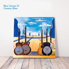 Blue Guitars II - Country Blues