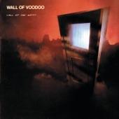 Wall of Voodoo - Spy World