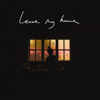 Leave My Home - FKJ song