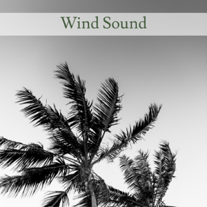 Nature Sounds - Wind Sound