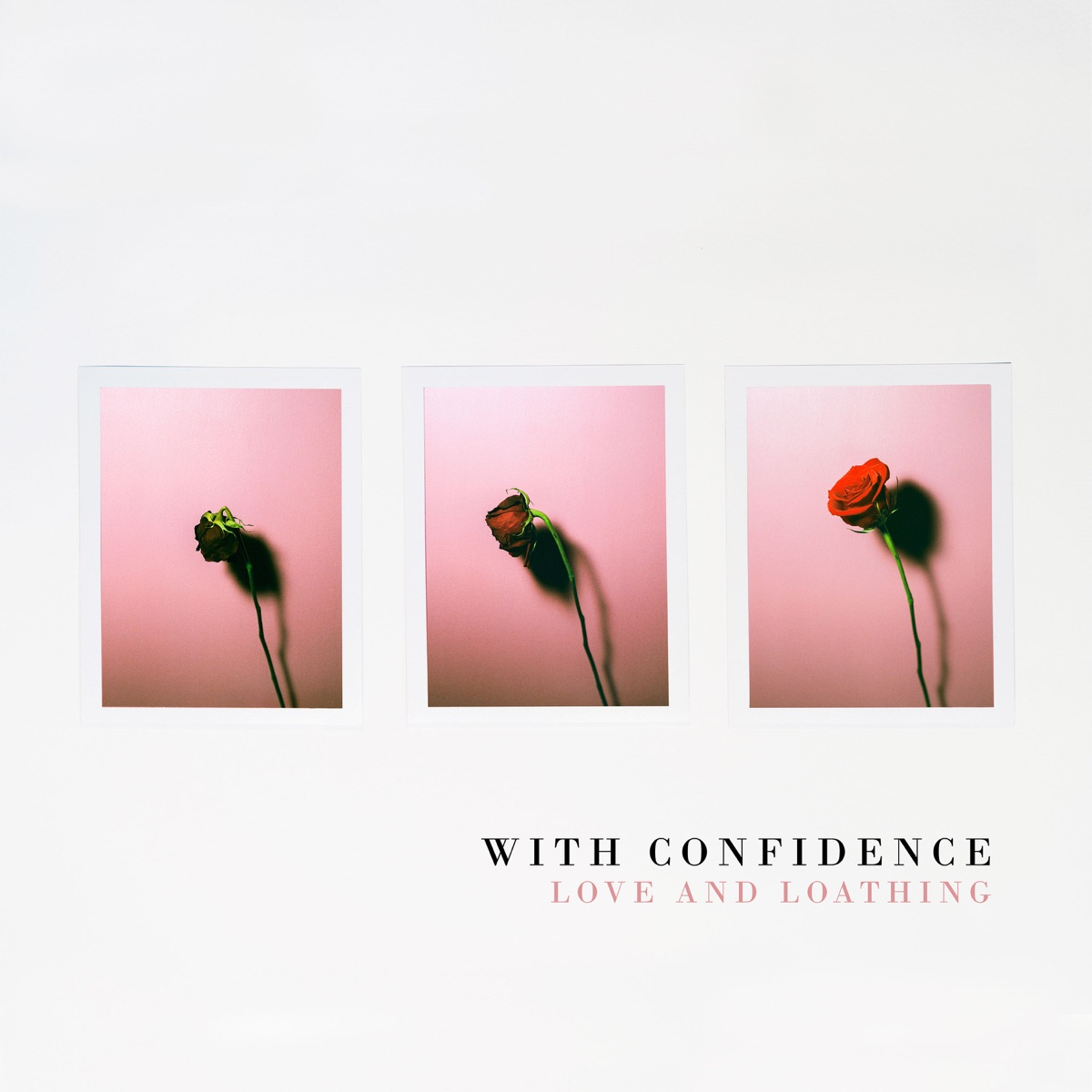 love and loathing album cover by with confidence