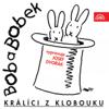 Josef Dvořák - Bob A Bobek Zahradničí (feat. Petr Skoumal) artwork