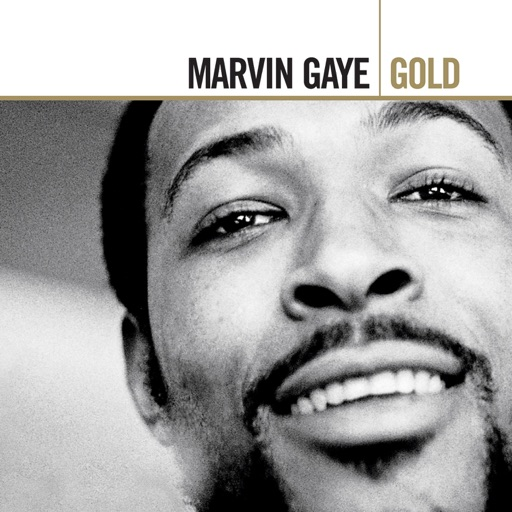 Art for I Want You by Marvin Gaye