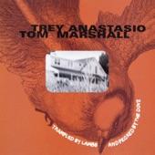 Trey Anastasio - No Regrets