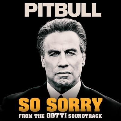 Back in time pitbull song download predriver.