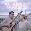 AVIWKILA - I Like You so Much, You'll Know It artwork