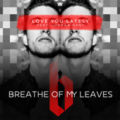 Love You Lately (feat. Jordan Gant)