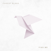 Find Me-Forest Blakk