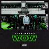 Tion Wayne - Wow artwork