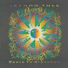 Jethro Tull - Dangerous Veils  arte