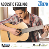 Acoustic Feelings - Mathieu Solente