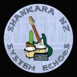 Shankara NZ & Deep Fried Dub - Deep Fried Shankara